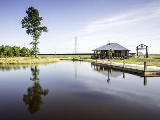 40 Arpent Wetlands Observatory