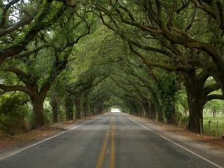 San Bernardo National Scenic Byway New Orleans Most