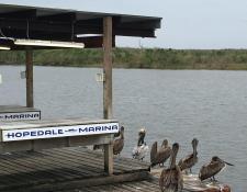 Hopedale Marina